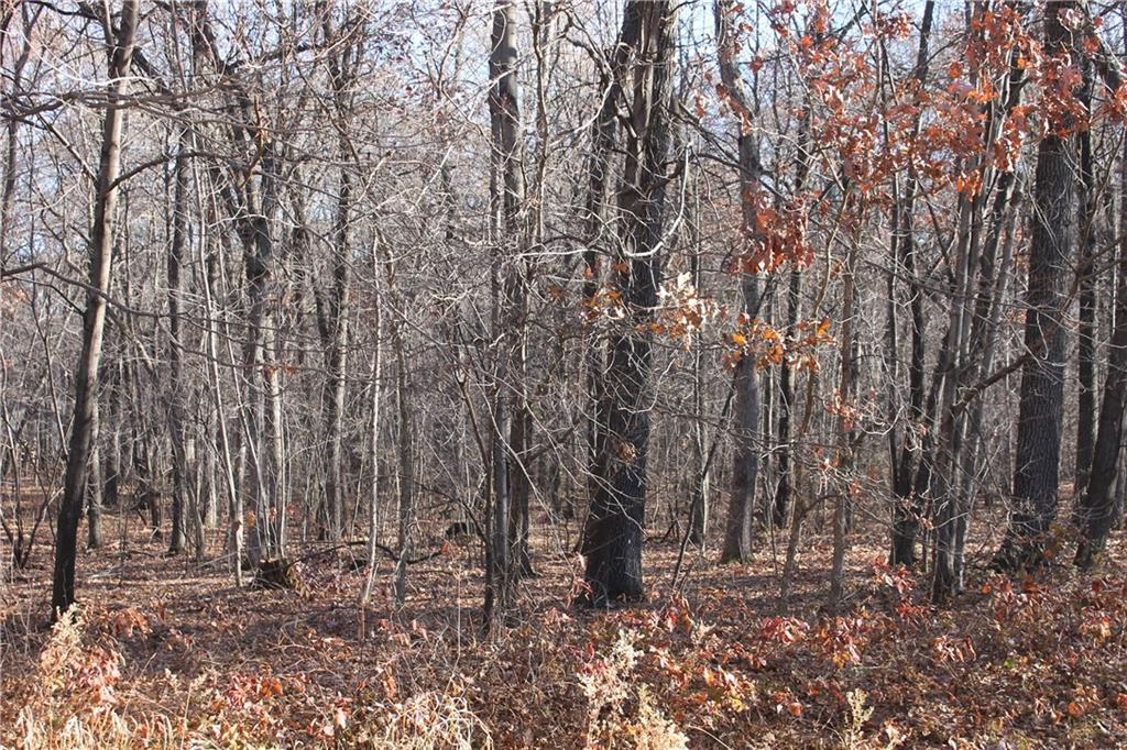 Lot 12 33rd Street Property Photo - Elk Mound, WI real estate listing