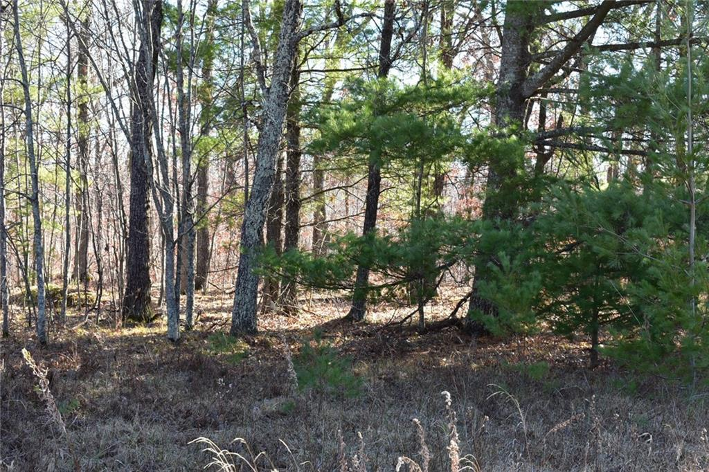 0 Eagle Nest Lot 219 Road Property Photo