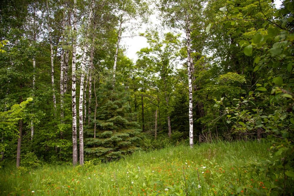 12419 S Roos Road Property Photo - Gordon, WI real estate listing