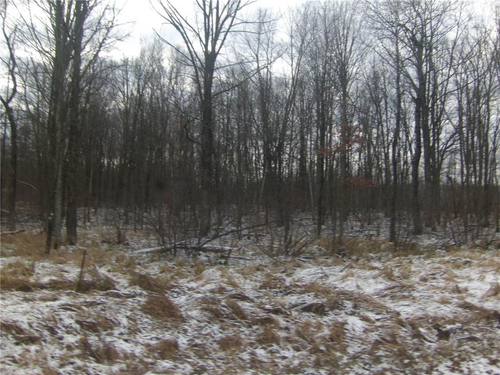 5 acres River Road Property Photo - Boyd, WI real estate listing