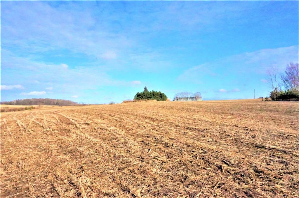 10 acres County Road DD Property Photo - Ellsworth, WI real estate listing