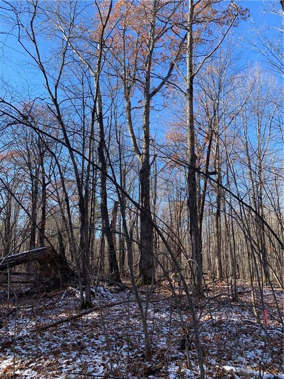 0 Robin Lane Property Photo