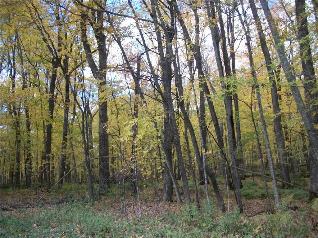 Lot #62 Chippewa/28 3/16 Court Property Photo - Birchwood, WI real estate listing
