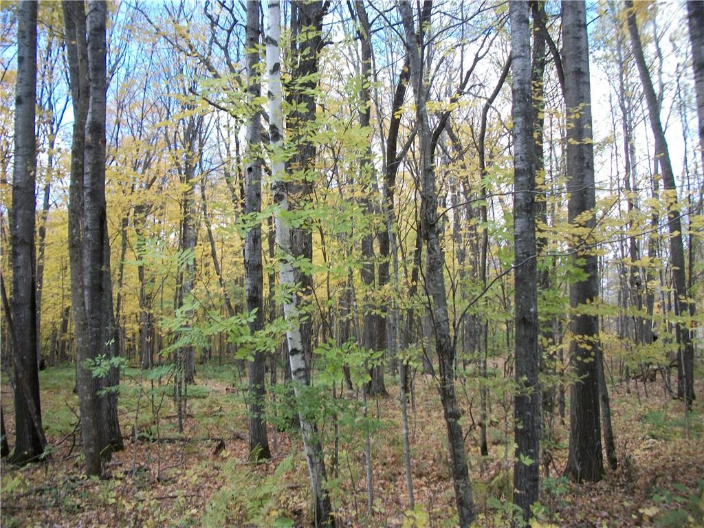 Lot # 63 Chippewa/28 3/16 Court Property Photo - Birchwood, WI real estate listing