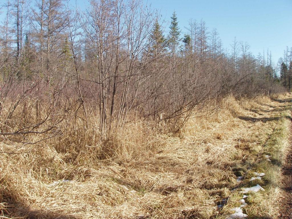 On Thorp Rd Property Photo - Glidden, WI real estate listing