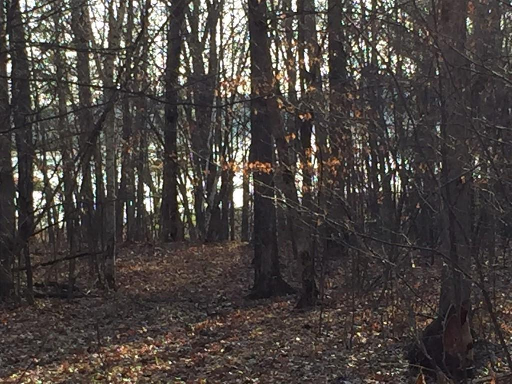 0 Woodridge Trail Property Photo