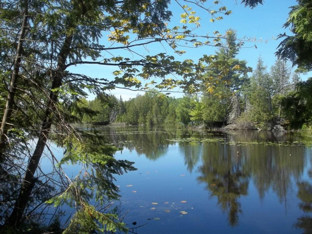 0 Sand Cove Pointe Road Property Photo