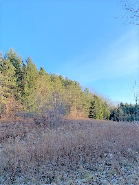 0 Poker Coulee Road Property Photo - Whitehall, WI real estate listing