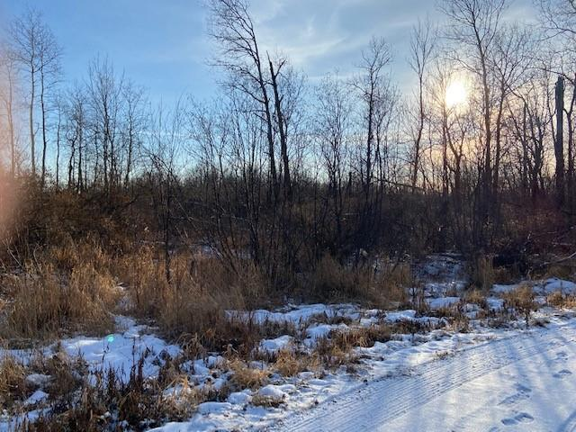 0 W Aborne Road Property Photo - Ojibwa, WI real estate listing