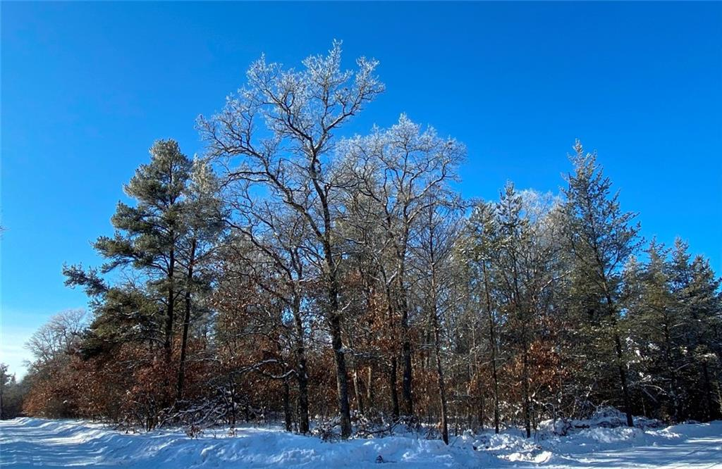 Lot 3 No Mans Trail Property Photo - Minong, WI real estate listing
