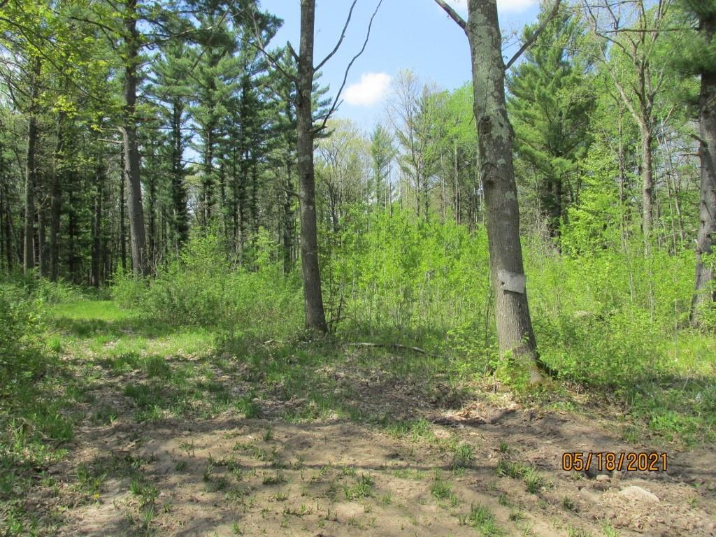 0 Dickerson Ave. Property Photo - Thorp, WI real estate listing