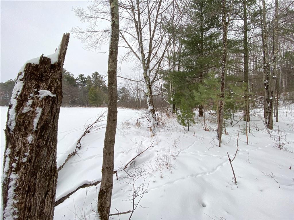 0 Sand Lake Road Property Photo