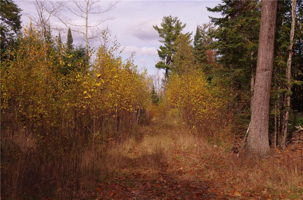 00 Bluff Creek Rd Property Photo