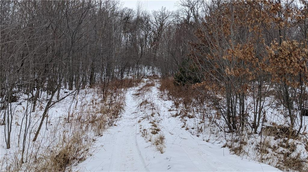 Lot 0 County Road D Property Photo - Fall Creek, WI real estate listing