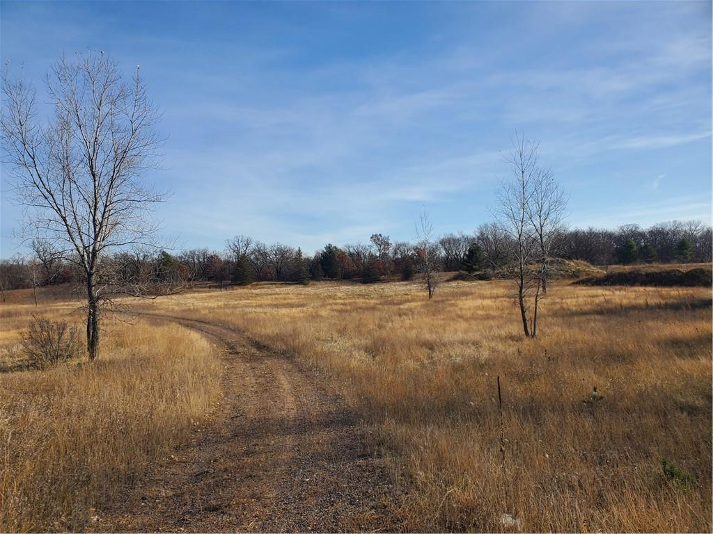 XXX Swenson Drive Property Photo - Colfax, WI real estate listing