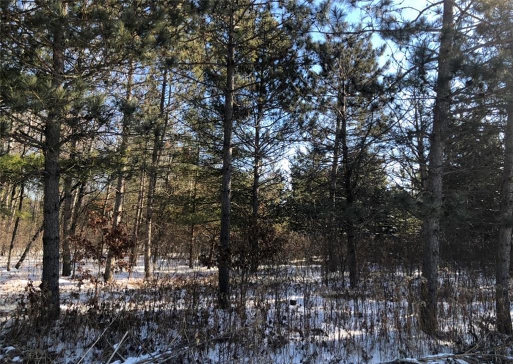 0 Water Tower Road Property Photo - Fall Creek, WI real estate listing