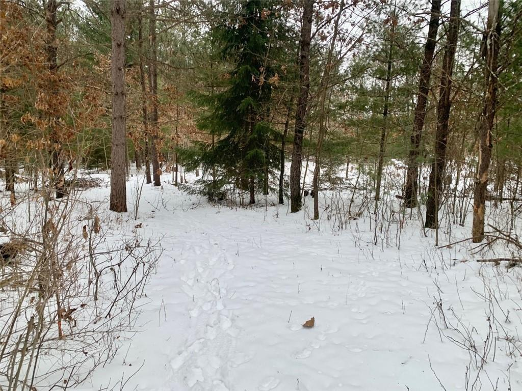 Lot 1 Nine Mile Creek Road Property Photo - Fall Creek, WI real estate listing