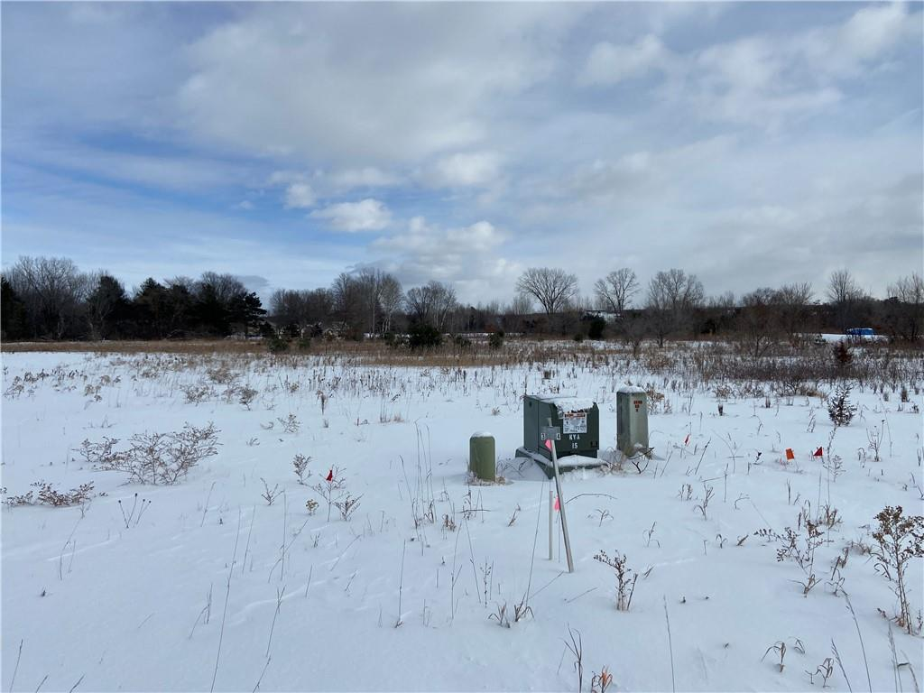 Lot 4 1006th Street Property Photo - Elk Mound, WI real estate listing