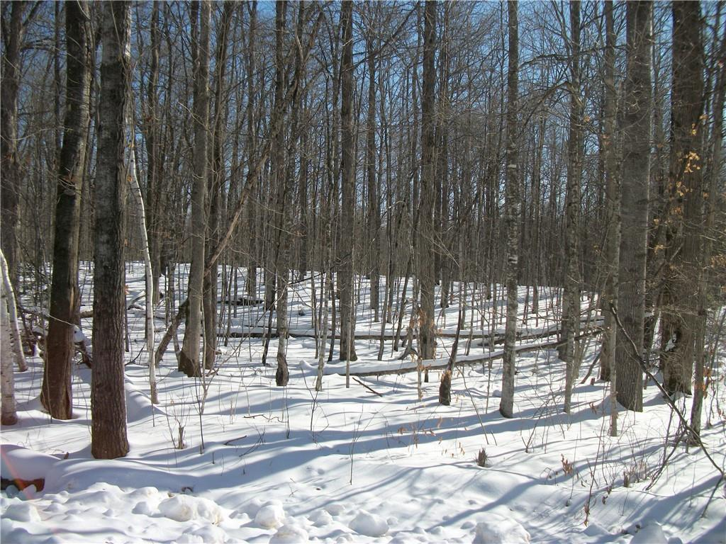 Birch Sub Of The Woods Real Estate Listings Main Image