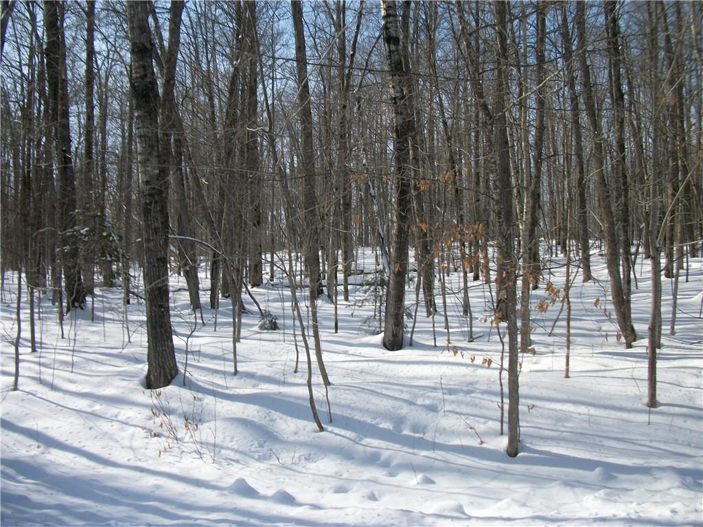 Lot #19 Allison Way Property Photo - Birchwood, WI real estate listing