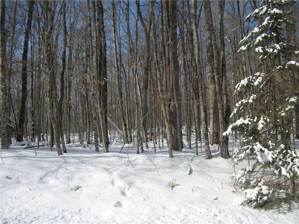 Lot #21 Allison Way Property Photo - Birchwood, WI real estate listing