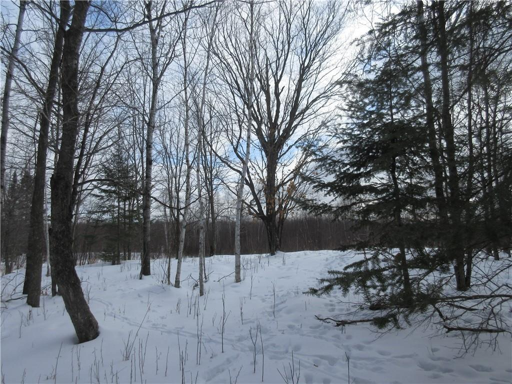 XXX County Rd T Property Photo - Dairyland, WI real estate listing