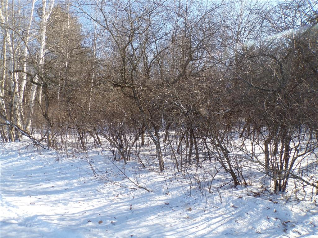 10.1 Acres 300th Avenue Property Photo - Holcombe, WI real estate listing
