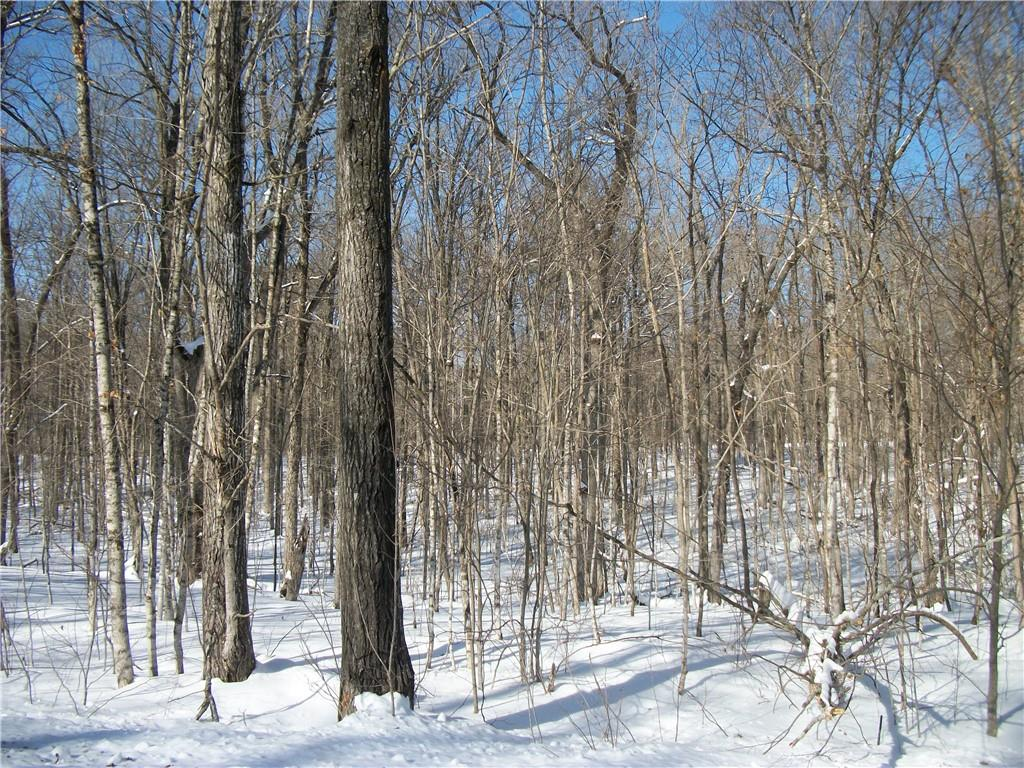 Lot #30 Allison Drive Property Photo - Birchwood, WI real estate listing
