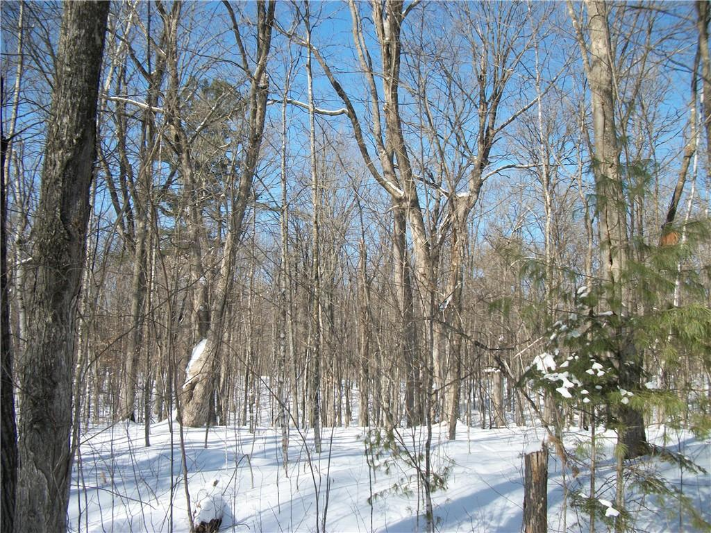 Lot #31 Allison Drive Property Photo - Birchwood, WI real estate listing