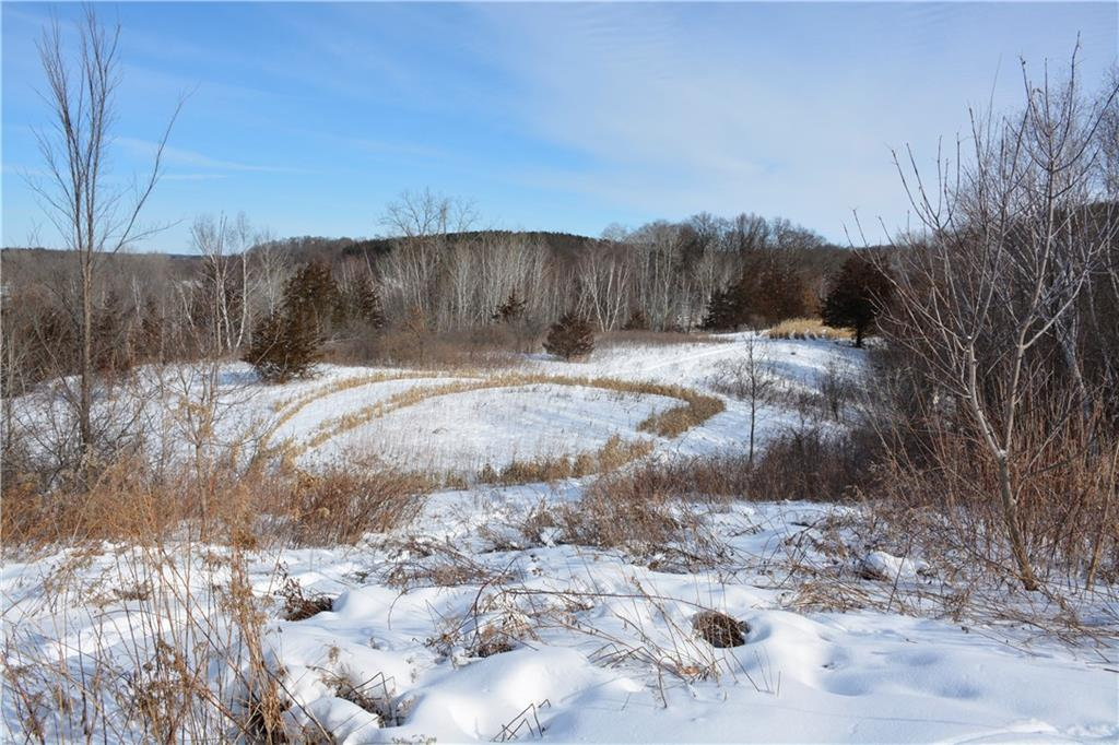 XX 170th ave Property Photo - Somerset, WI real estate listing