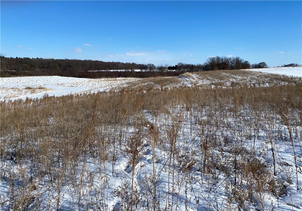 Lot 3 765th Street Property Photo - Elk Mound, WI real estate listing