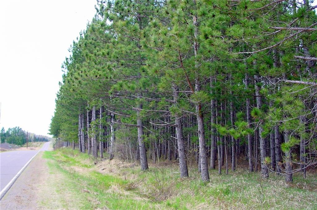 20 Acres on Cty. Rd. B North Property Photo - Glen Flora, WI real estate listing