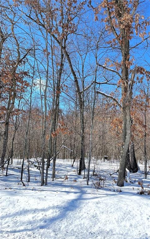 Lot 1 Cty Rd D Property Photo - Fall Creek, WI real estate listing