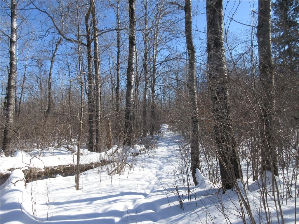 XXX Lundquist Rd Property Photo - Dairyland, WI real estate listing