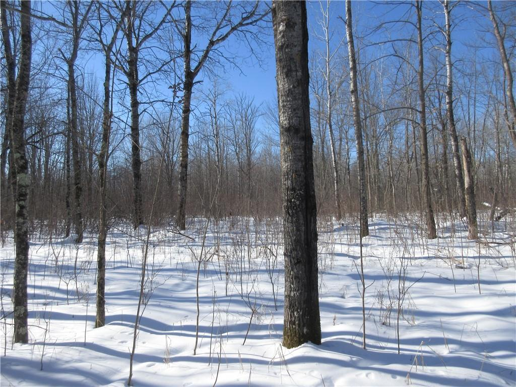 XXX Hwy 35 Property Photo - Dairyland, WI real estate listing