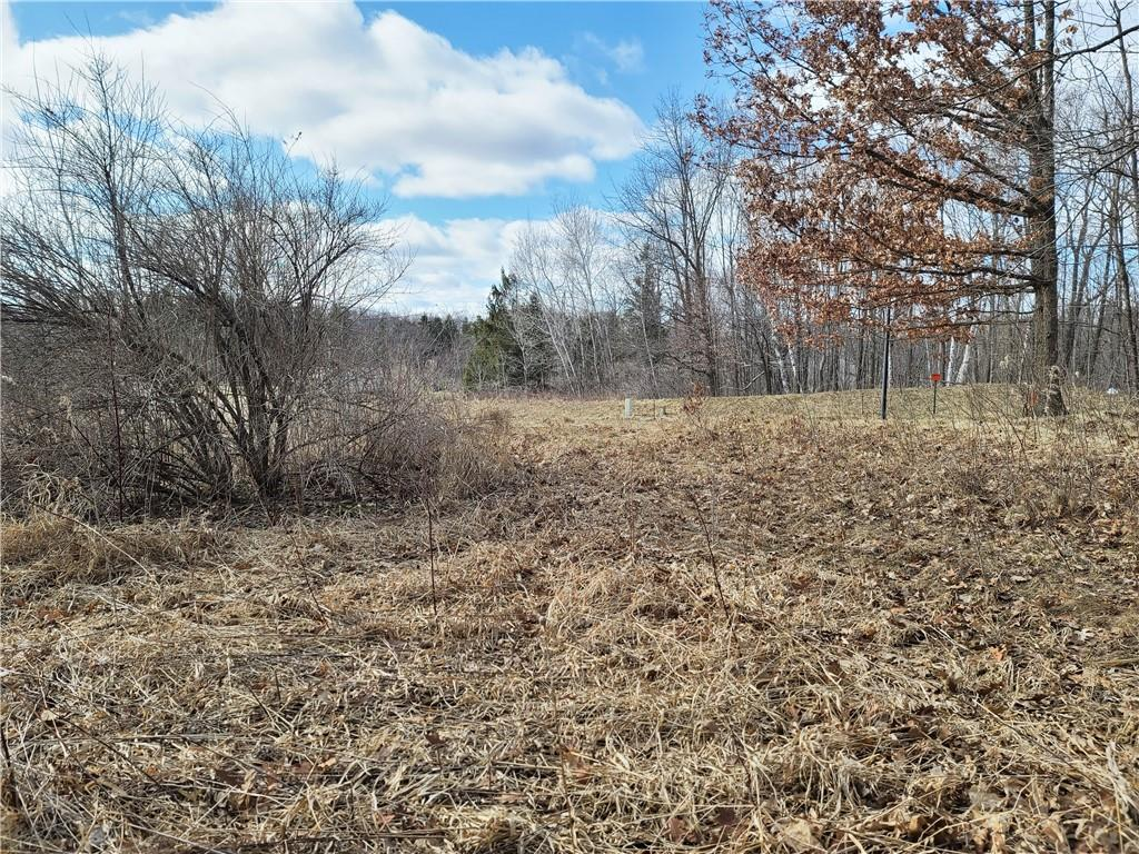 Lot 21 Wilderness Hills Property Photo - Luck, WI real estate listing