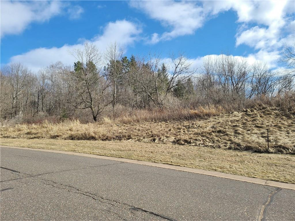 Lot 22 Wilderness Hills Property Photo - Luck, WI real estate listing