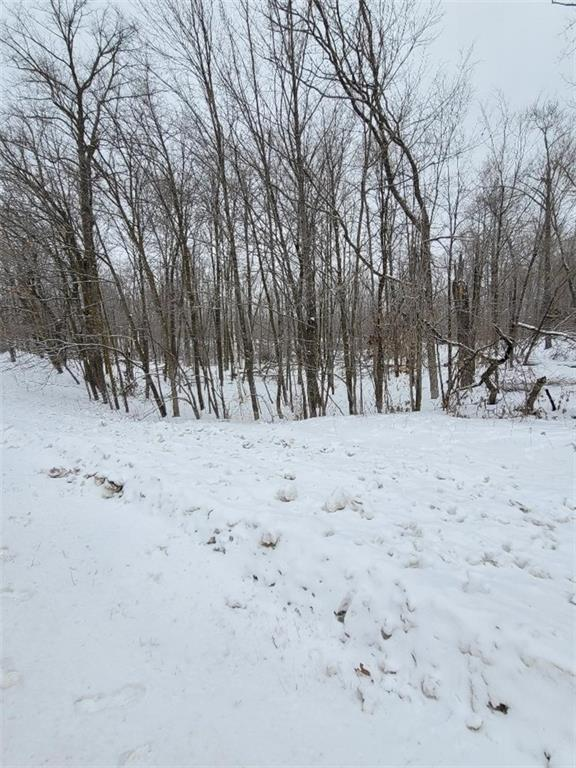 00 Highway 48 Property Photo - Luck, WI real estate listing