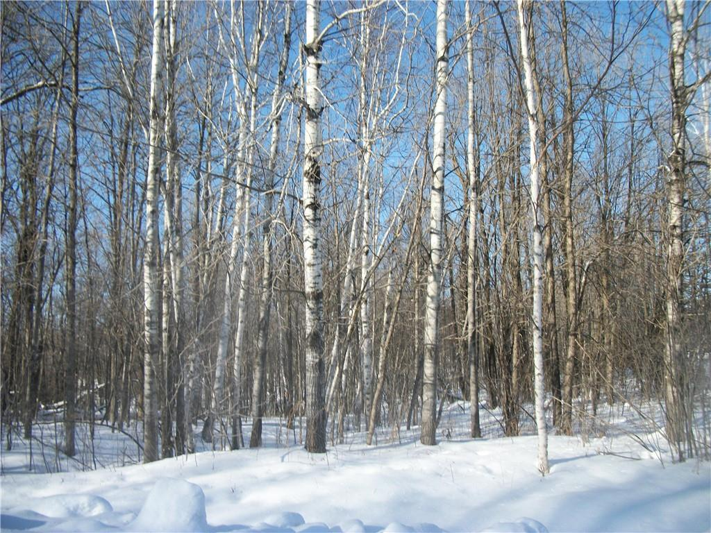 Lot #96 Woods Avenue Property Photo - Birchwood, WI real estate listing