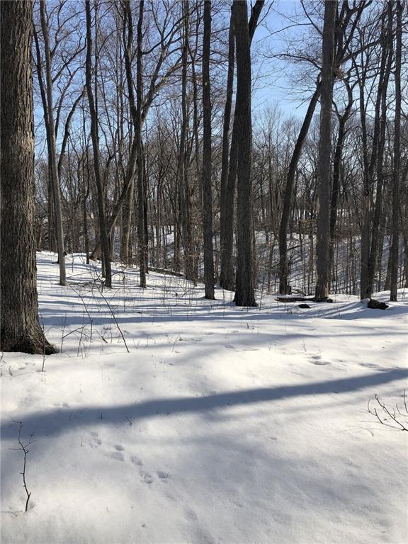 0 18th Street Property Photo - Chetek, WI real estate listing