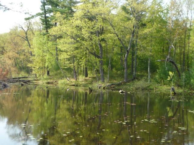 N804 Holy Island Road Property Photo - Sarona, WI real estate listing