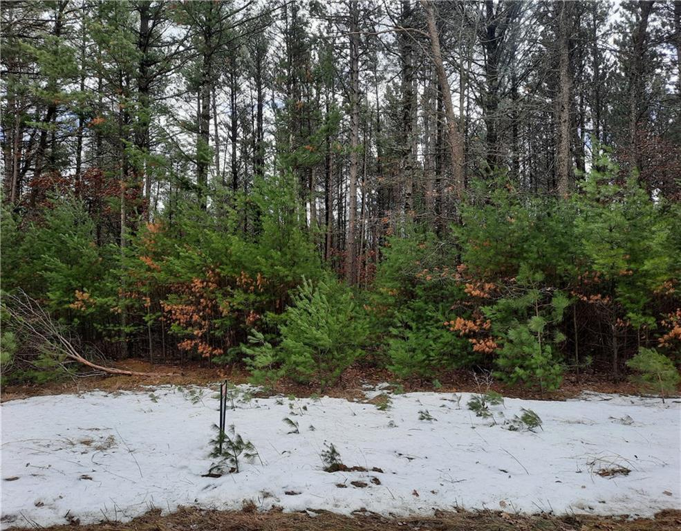 W8501 Forest Lane Property Photo - Hatfield, WI real estate listing
