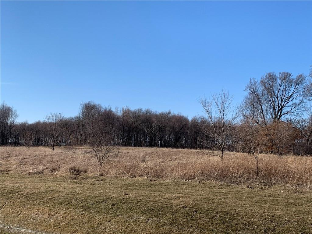 Lot 01 Sycamore Street Property Photo - Eau Claire, WI real estate listing