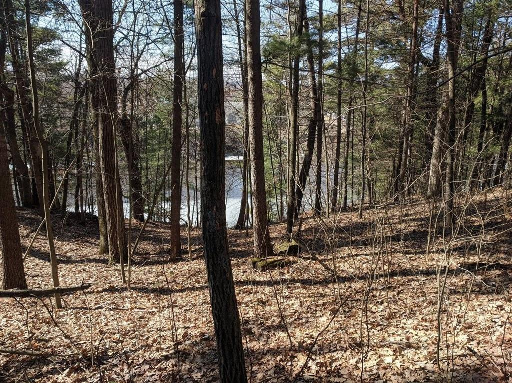 Lot 3 297th Street Property Photo - Eau Galle, WI real estate listing