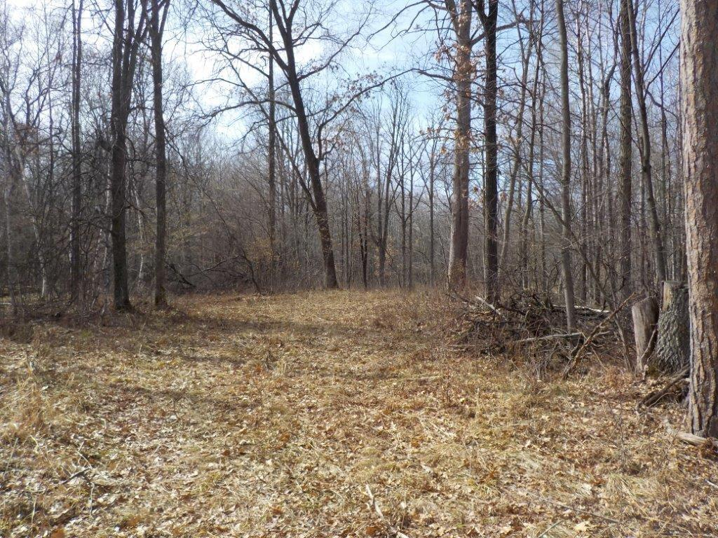 0 Paulich Road Property Photo - Siren, WI real estate listing