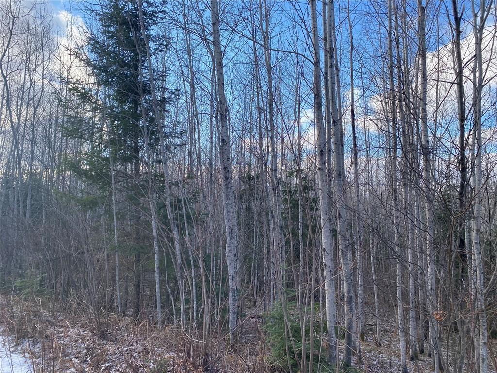 On Bear Lake Road Property Photo 1