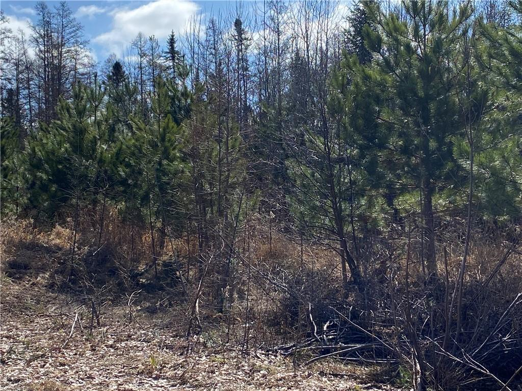 On County Road F Property Photo - Phillips, WI real estate listing