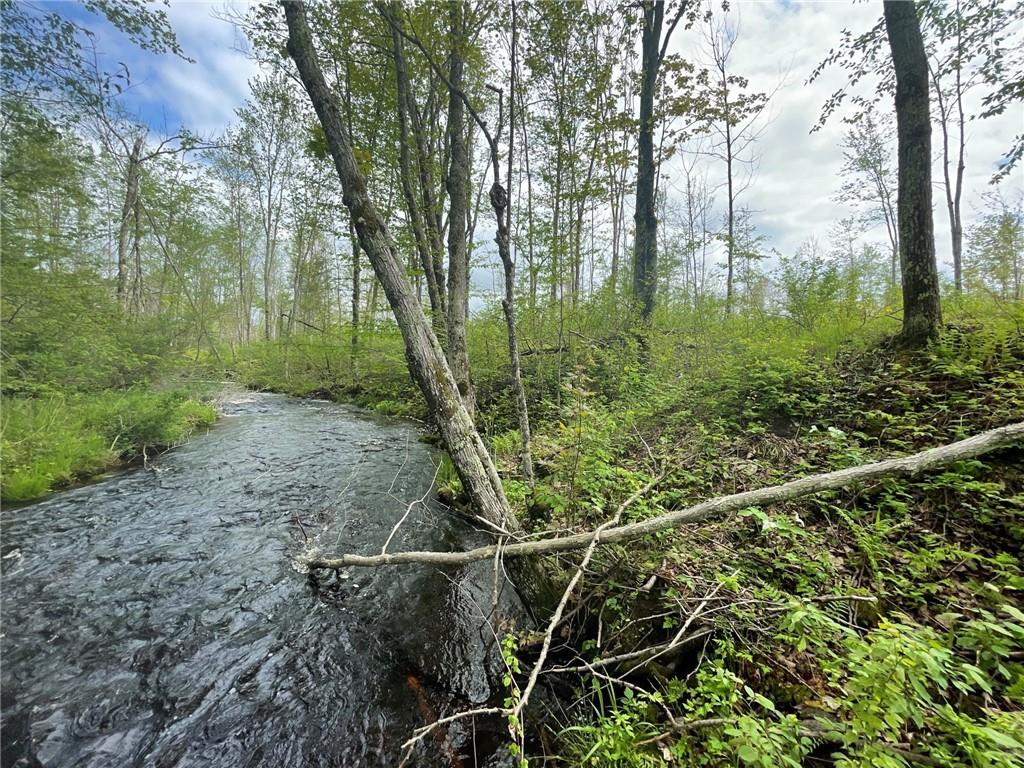 0 Horse Creek Trail Property Photo