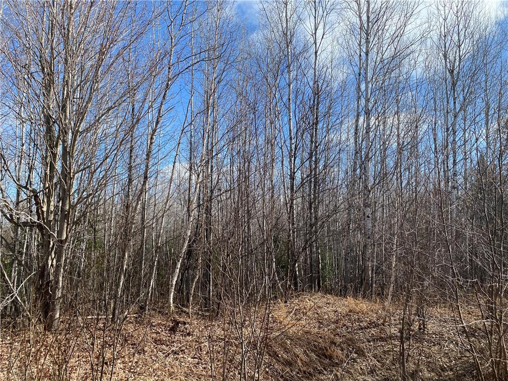 On Highway 70 Property Photo - Park Falls, WI real estate listing