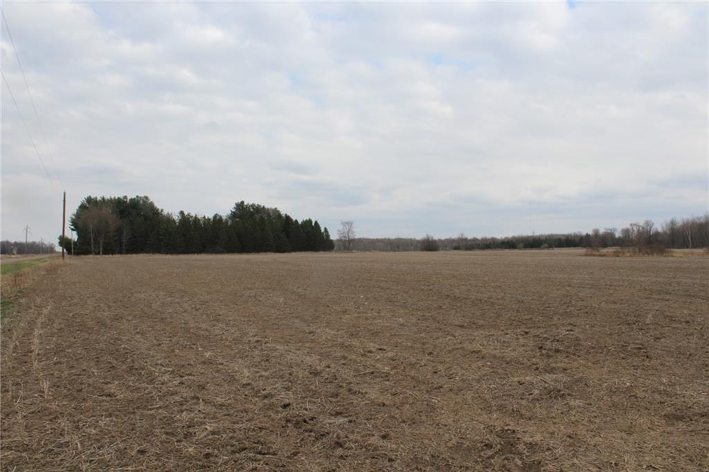 0 Townline Road Property Photo - Owen, WI real estate listing